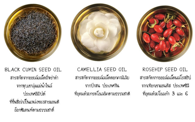 the body shop seed oil