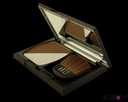 ARTY PROFESSIONAL LIGHT AND SHADOW PRESSED POWDER