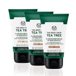 Tea Tree Flawless BB Cream