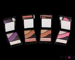 ARTY Seductress  EYE  PALLETTE